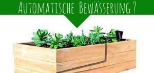 Gärtner Pötschke Hochbeet Bewässerungssystem